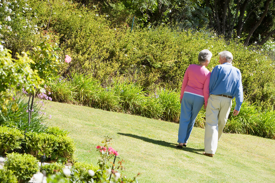senior-couple-walking-in-garden-holding-hands_StFM43ABi.jpg