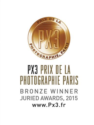 PX3_2015_winner logo.png