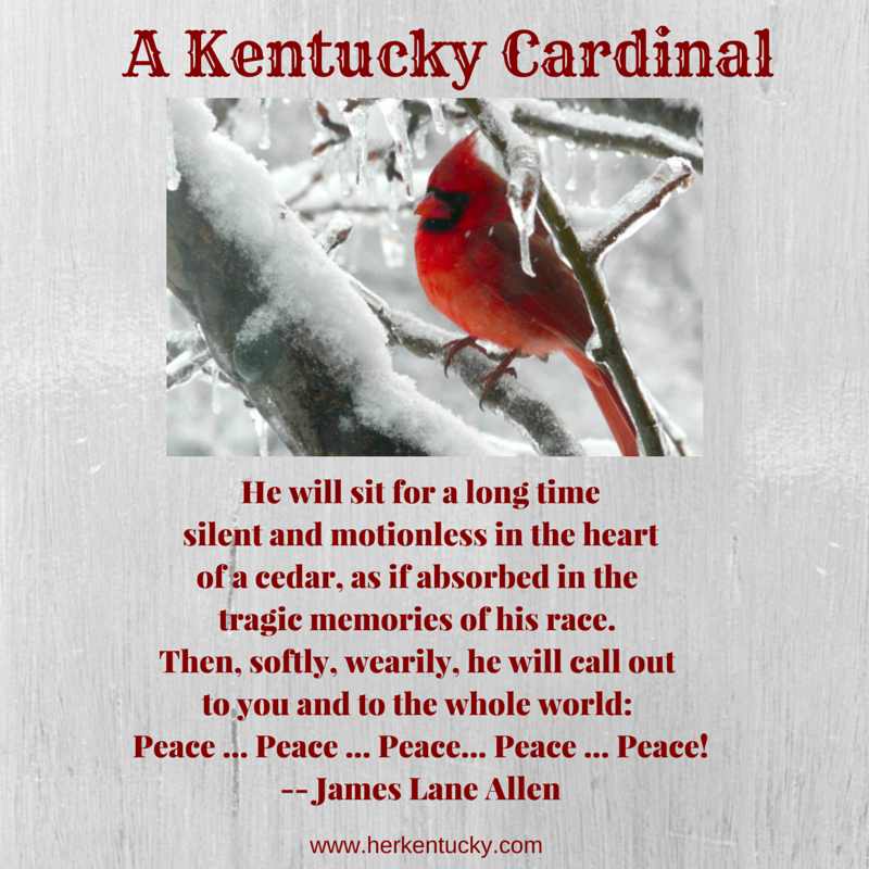 A Kentucky Cardinal James Lane Allen
