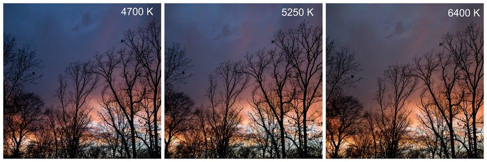 Sunset white balance comparison kelvin