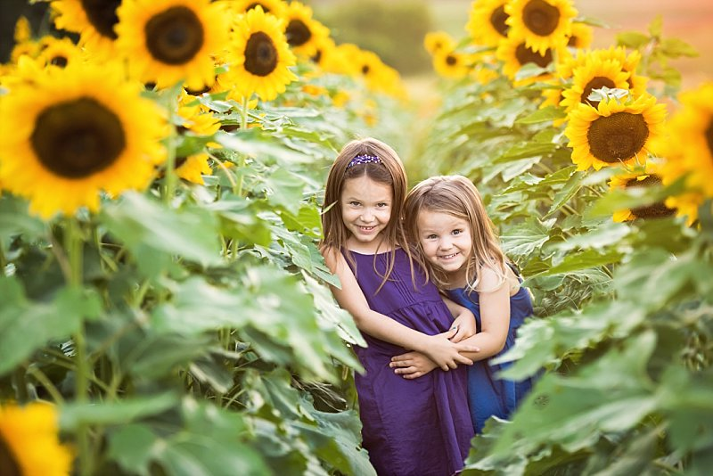 Knob Noster Child Photography Sunflowers_0002.jpg