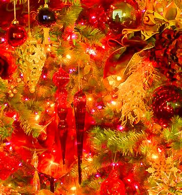ChristmasTree02_fs-KJ.jpg