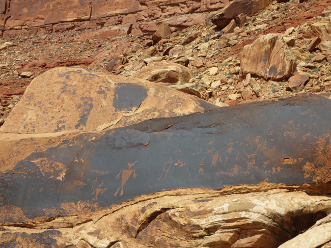 Petroglyph panels abound in this area!