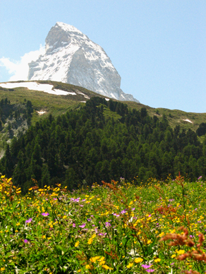 Matterhorn, near Zermatt, Switzerland.  The most beautiful hike ever!