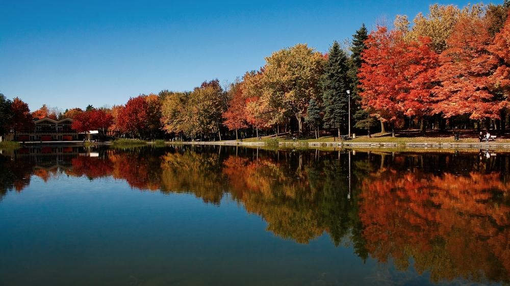 Parc Mont Royal, Flavio Freitas