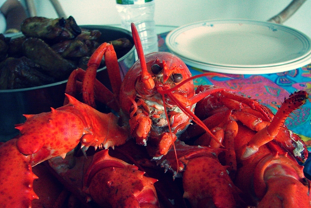 Fresh Lobster, Theresa Arzadon-Labajo
