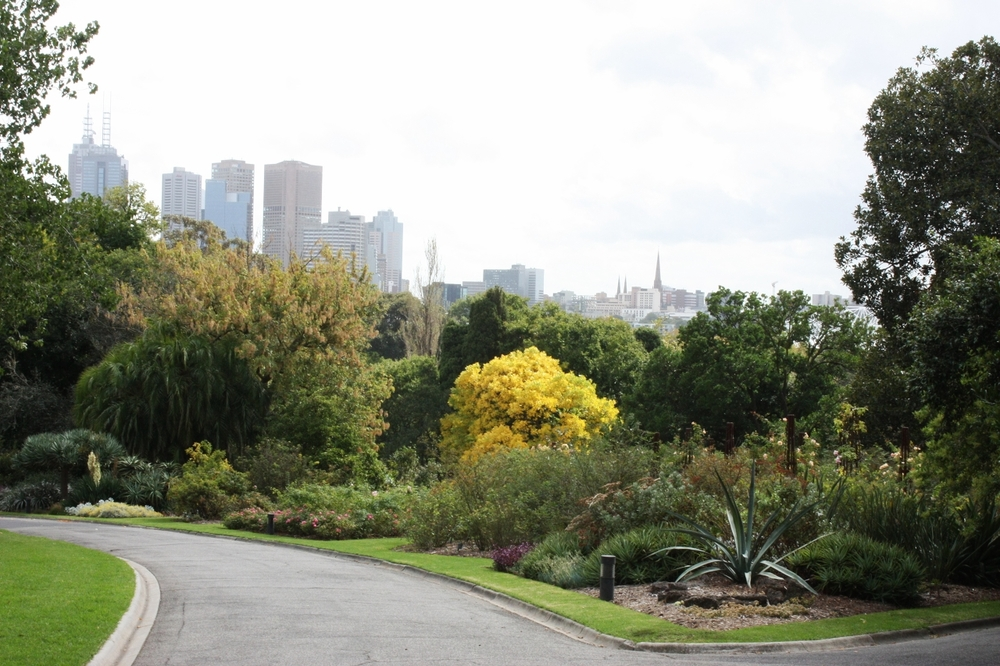 Royal Botanic Gardens, Claudio Jofré Larenas