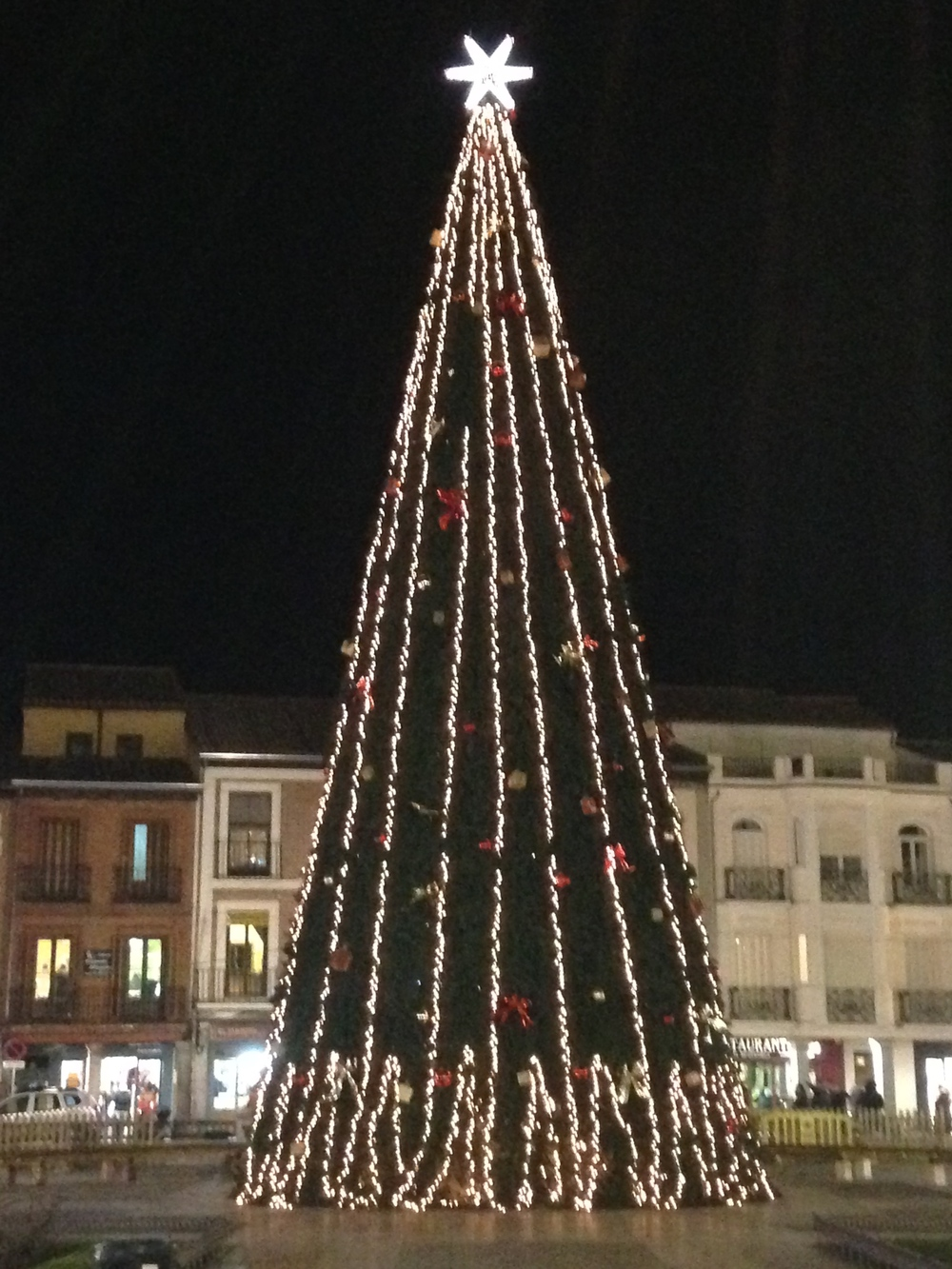 The Christmas tree in the central plaza.