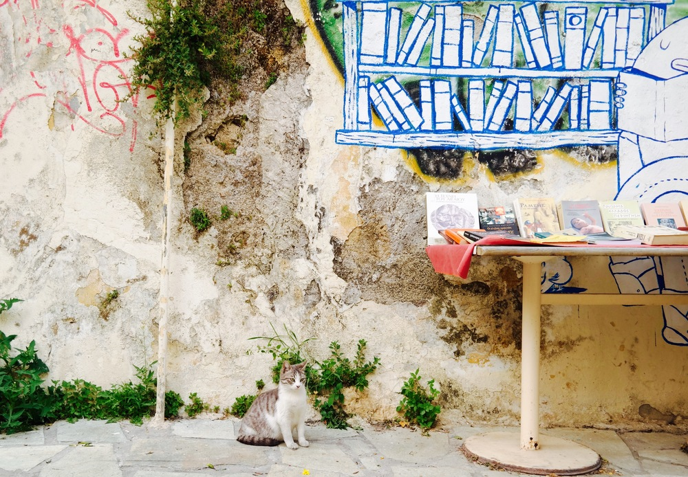 Athens is a city full of cats. These strays seem to be well taken care of, and pop up anywhere and everywhere.