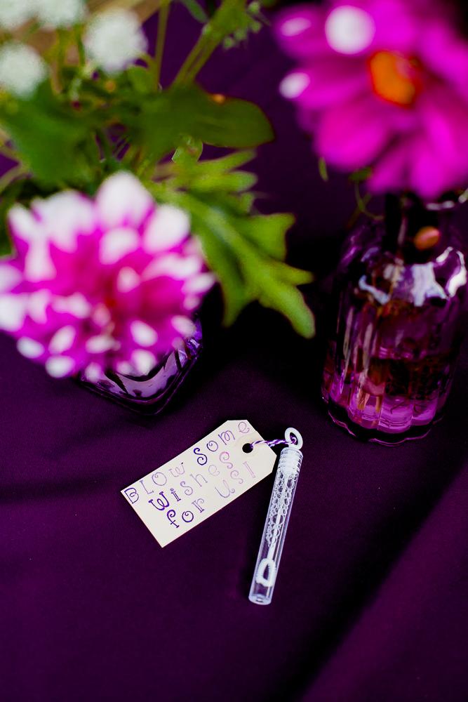 Chrisabel Photography - Elam Wedding 87.jpg