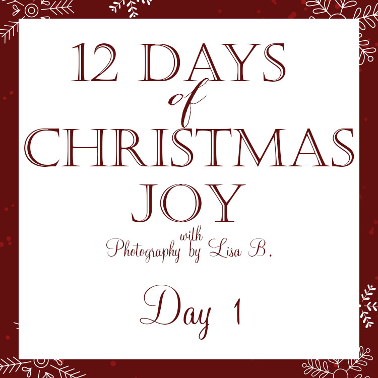 12_days-christmas-photography-lisab-day-1