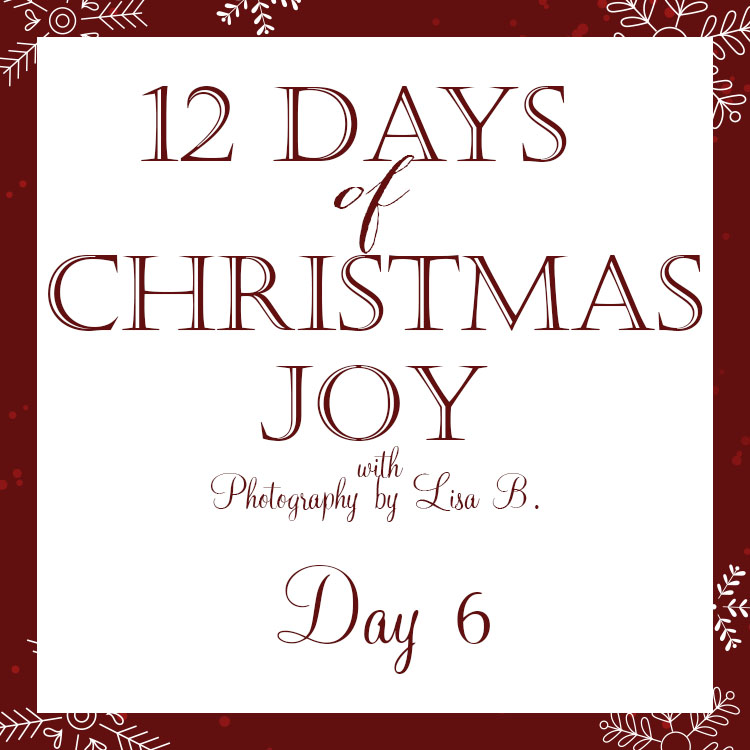12 Days - 6a.jpg