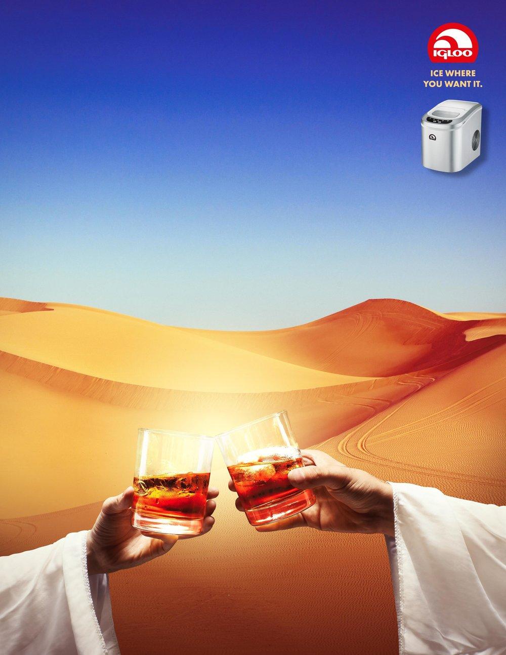 Igloo Desert.jpg