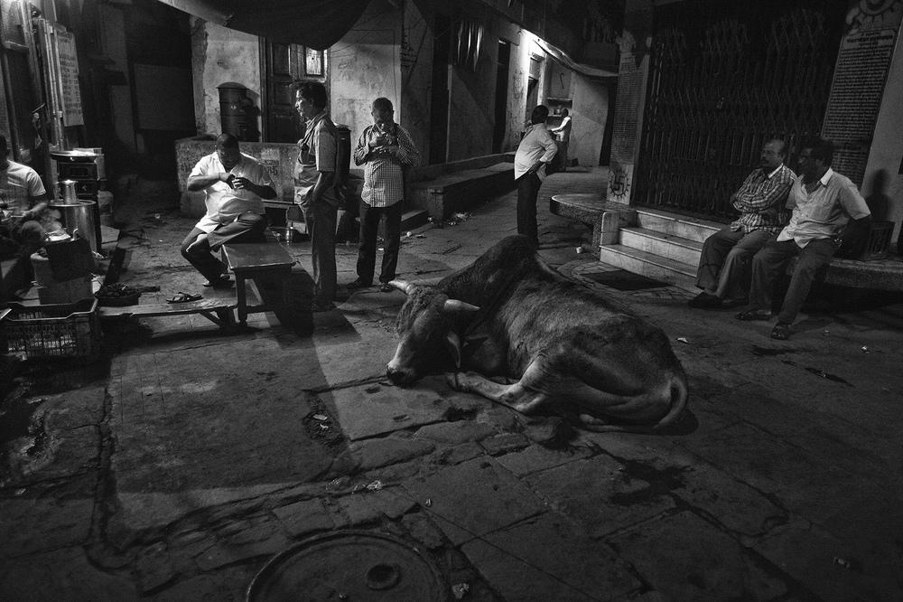 """Chai Shop, Kedarghat, Varanasi"" copyright : Russell Shakespeare 2015"