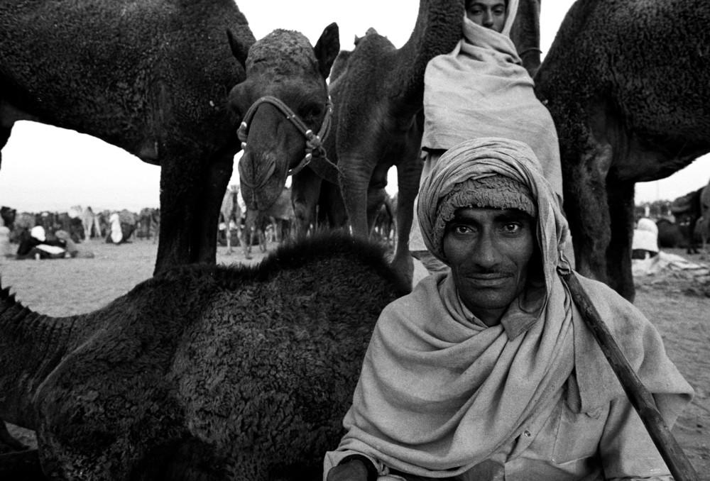 """""""Pushkar, India""""   photo copyright : Russell Shakespeare"""