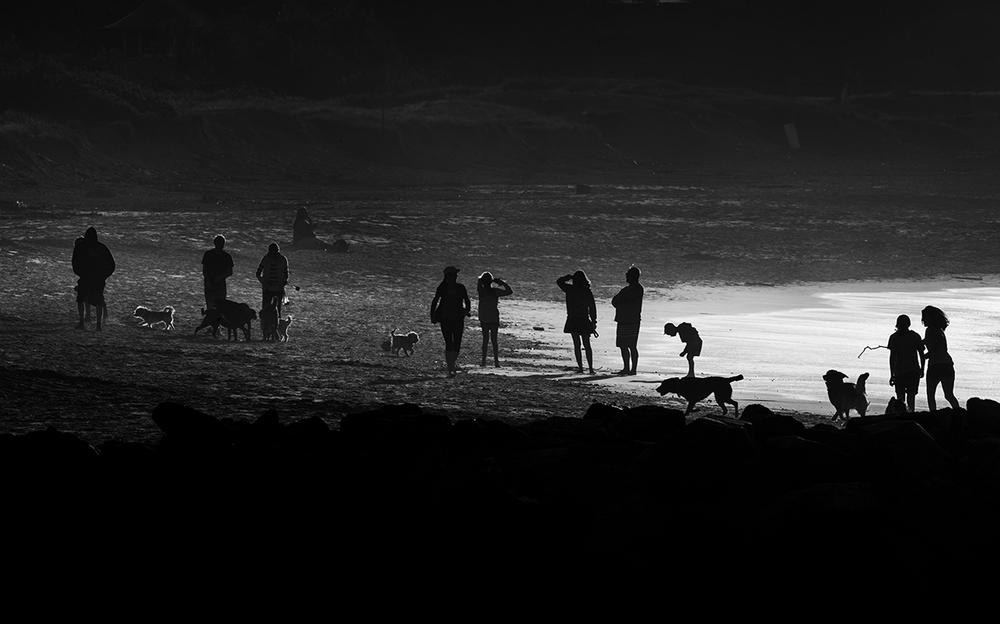 """Last Light, Palm Beach""                   photo copyright : Russell Shakespeare 2015"
