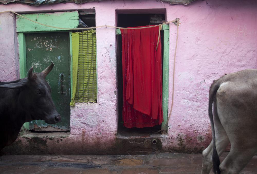 """""""Varanasi, India""""     copyright : Russell Shakespeare 2015"""