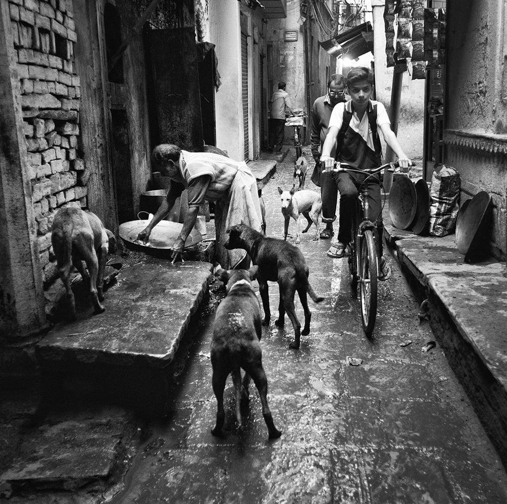 Varanasi, India        © Russell Shakespeare 2015