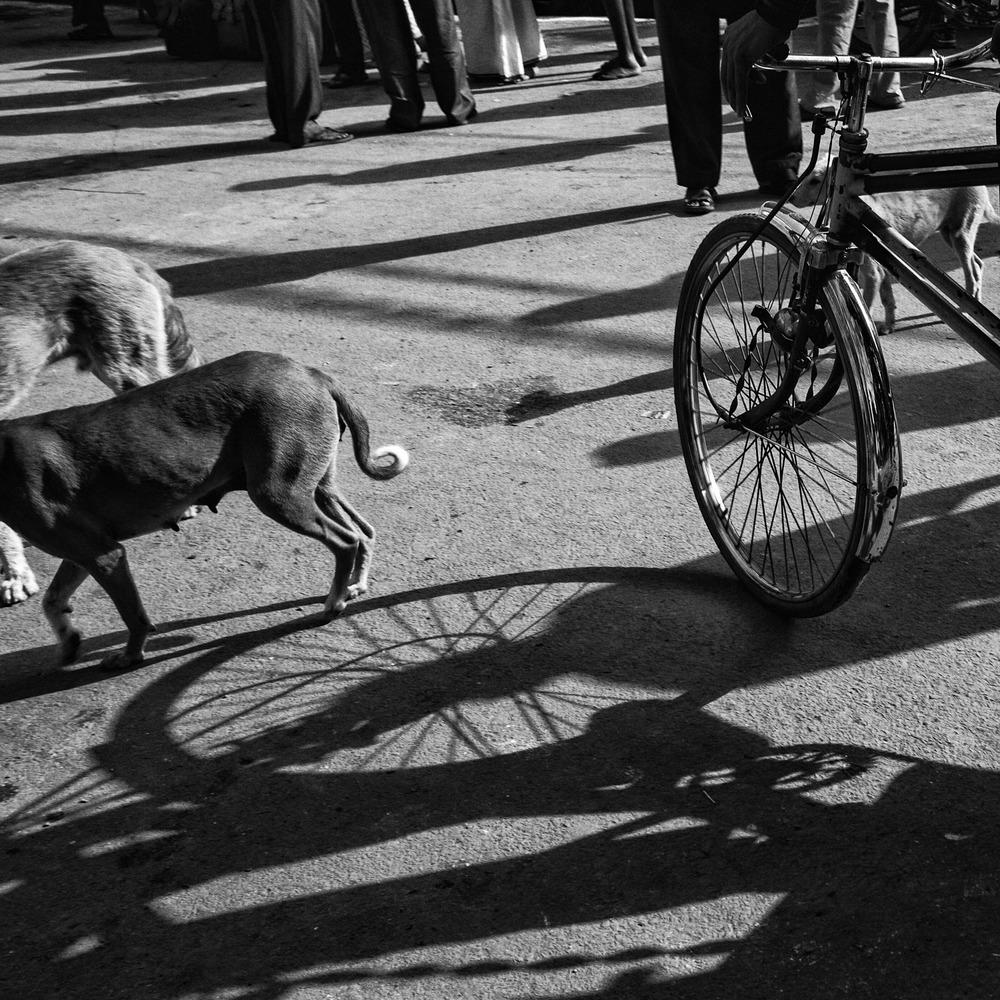 """""""Varanasi""""   © Russell Shakespeare 2015"""