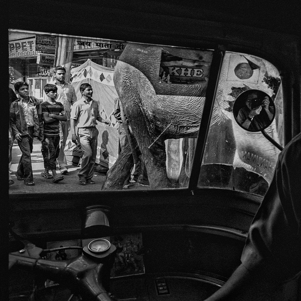 """View from the Auto Rickshaw""                                              © Russell Shakespeare"