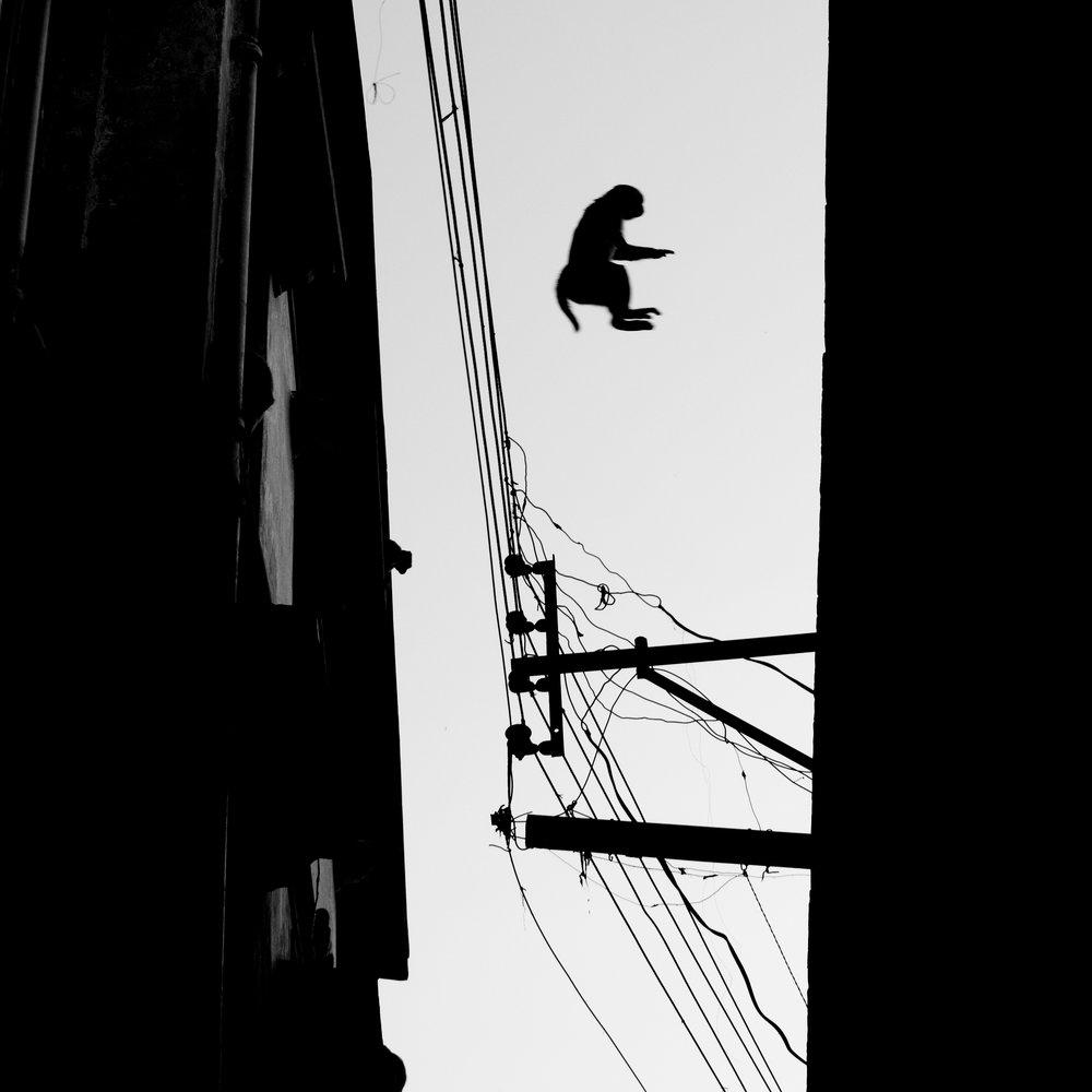 """""""Leap of Faith""""             Varanasi, India  © Russell Shakespeare 2016"""