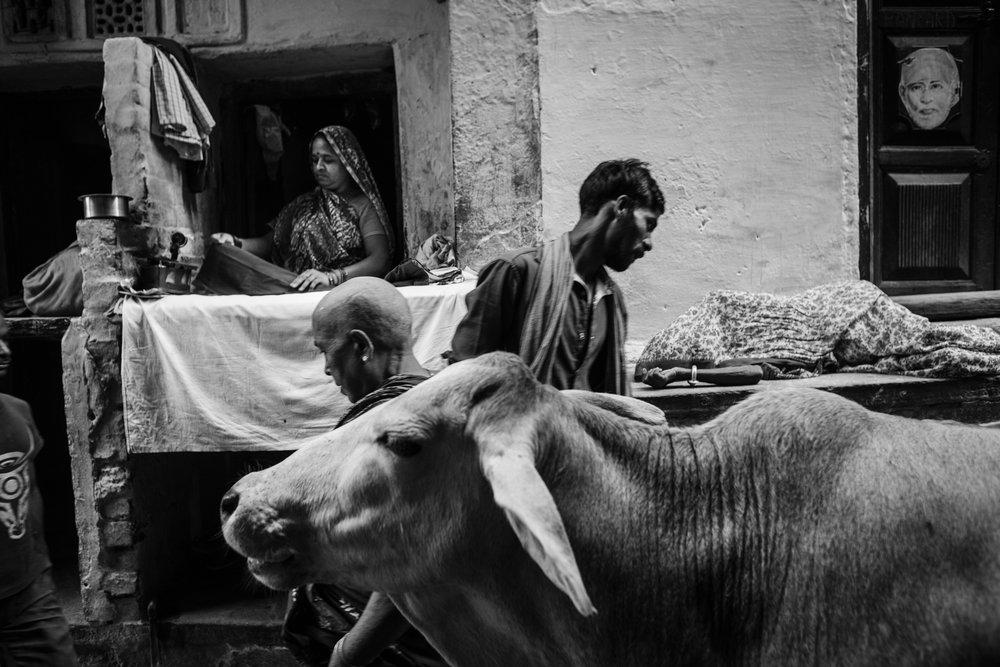 Varanasi, India.                                        © Russell Shakespeare 2016