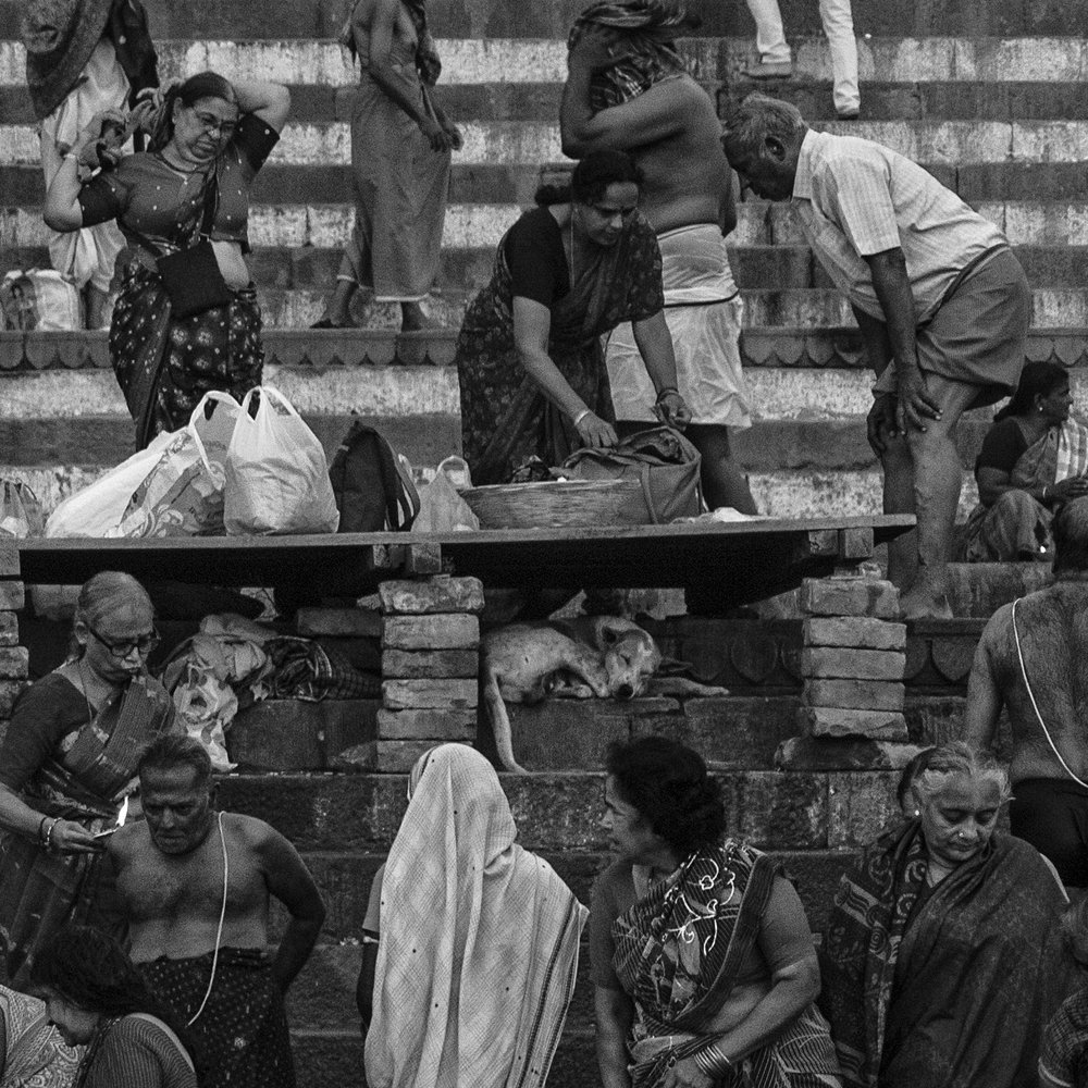 """Dog Tired, Kedarghat, Varanasi""        © Russell Shakespeare 2016"