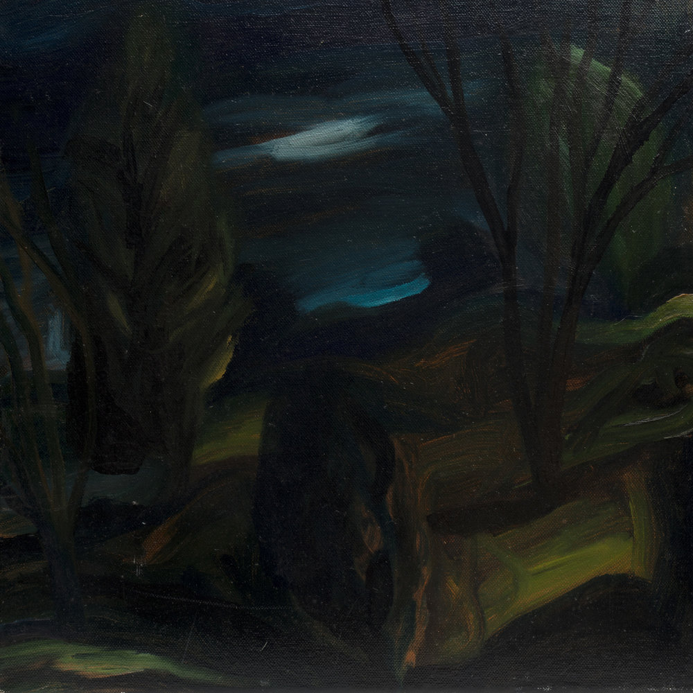 """Currumbin Valley""                                          © David Usher"