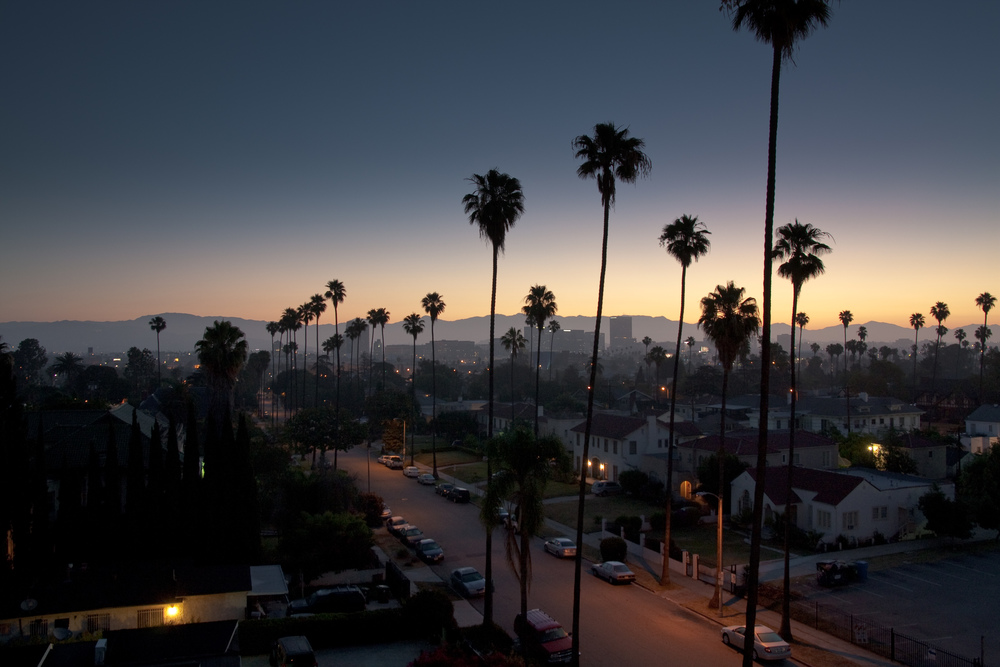 view-from-koreatown-los-angeles-by-shawn-lipowski.jpg