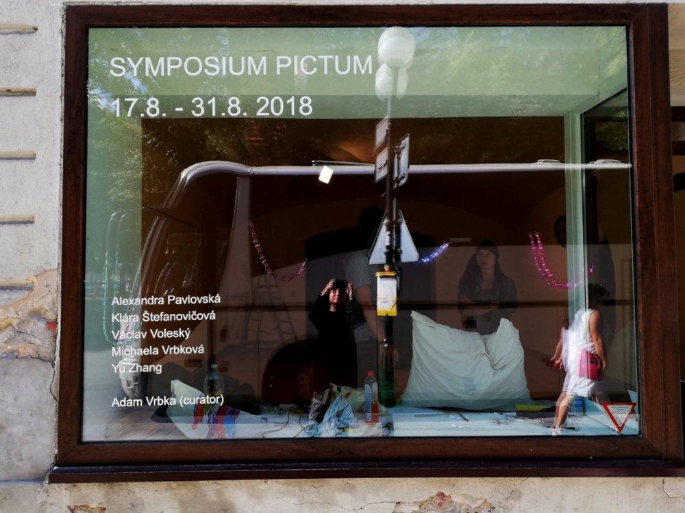 SYMPOSIUM PICTUM, 2018