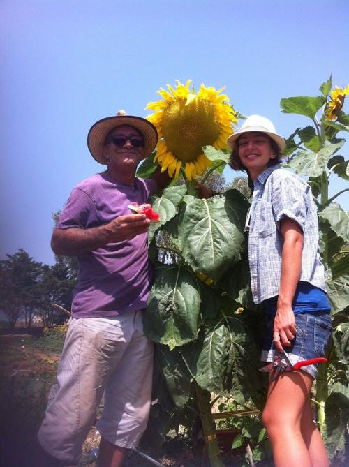Pawlu Debono & Alex Cachia of Vincent's Eco-Farm