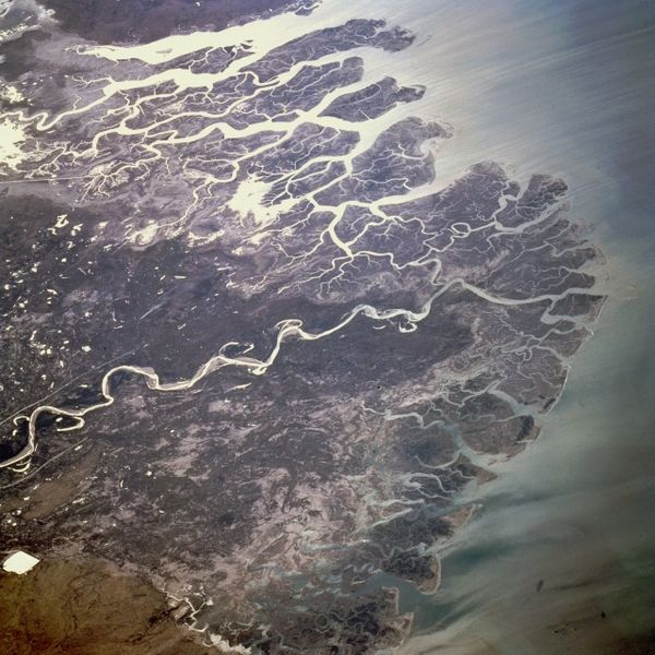 Photograph of the Indus River Delta taken by NASA