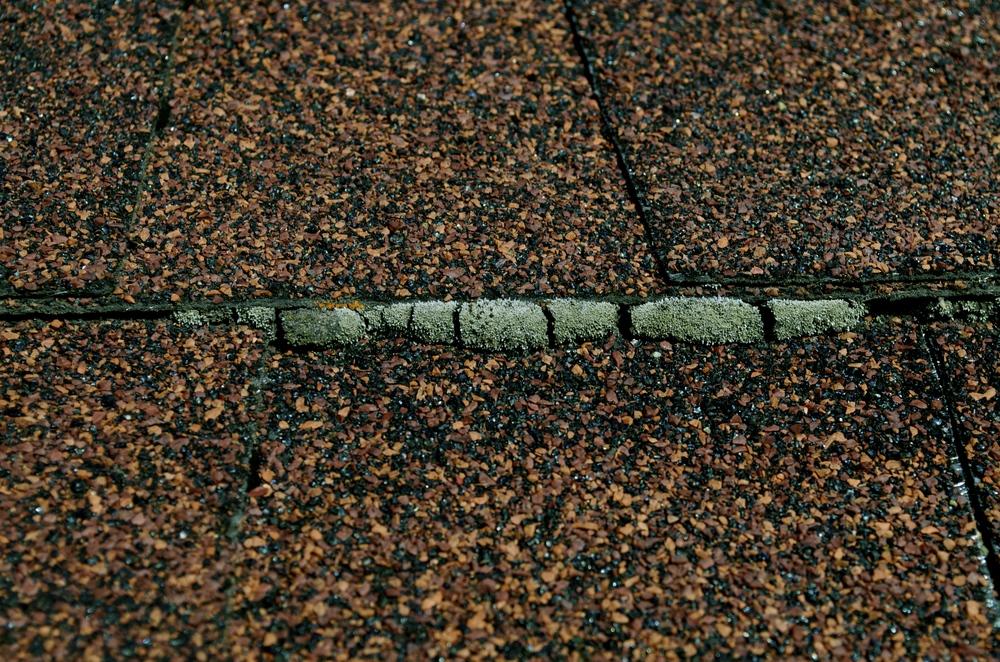 Spokane Roof Cleaning