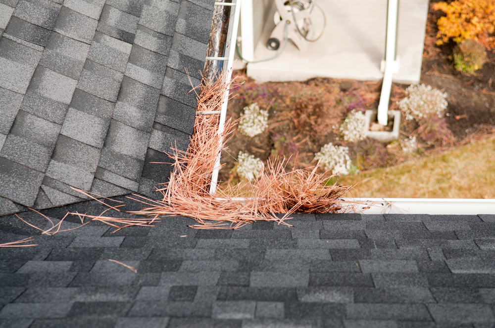 Clean Gutters with no mess left behind
