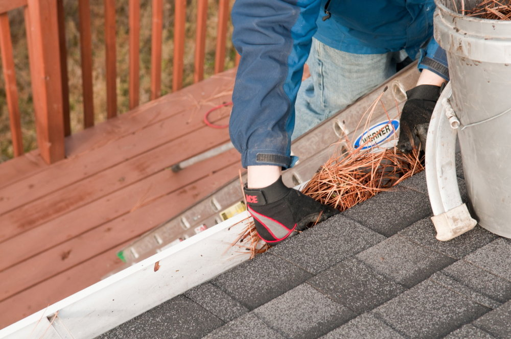 Cleaning gutters in Cheney.
