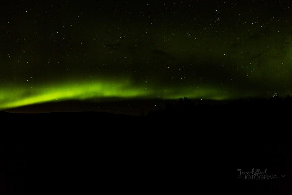 Aurora 082214-9376.jpg