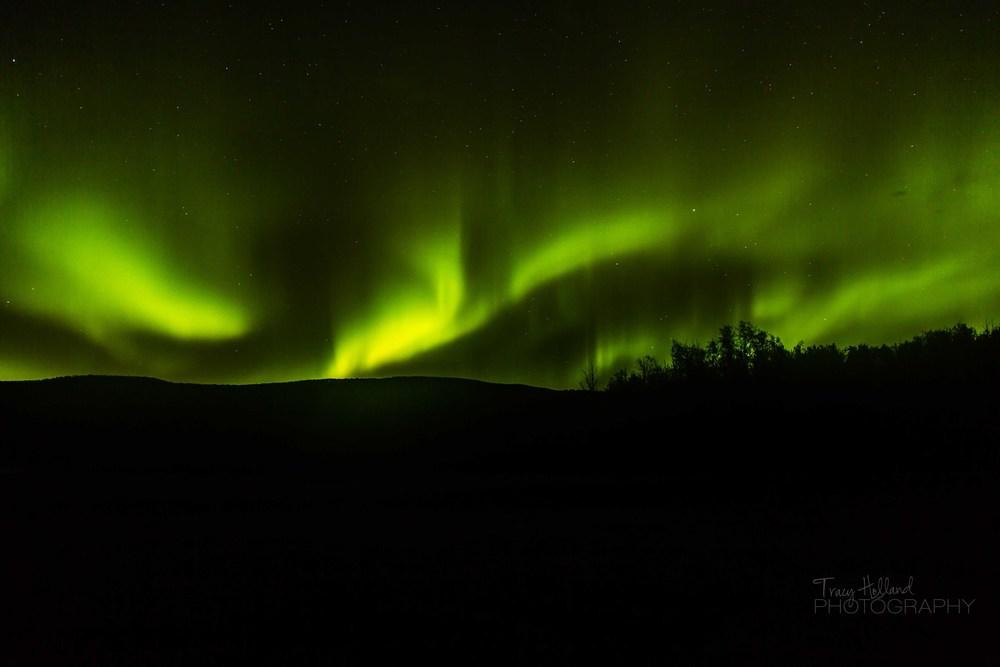 Aurora 082214-9383.jpg