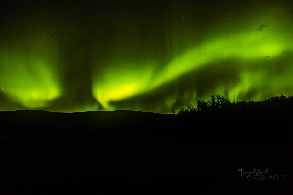 Aurora 082214-9384-2.jpg