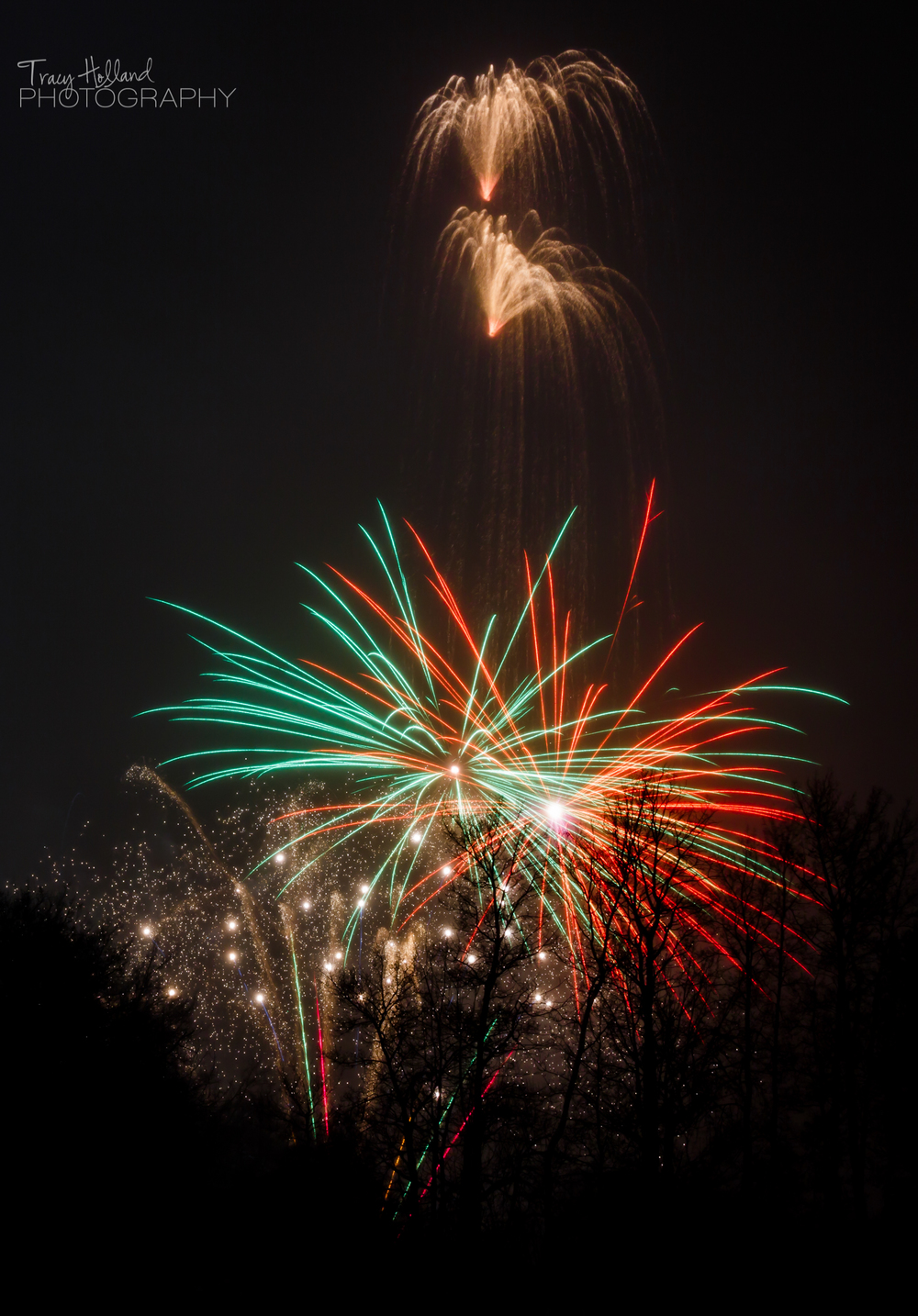 New Year 15 Fireworks-9695-2.jpg
