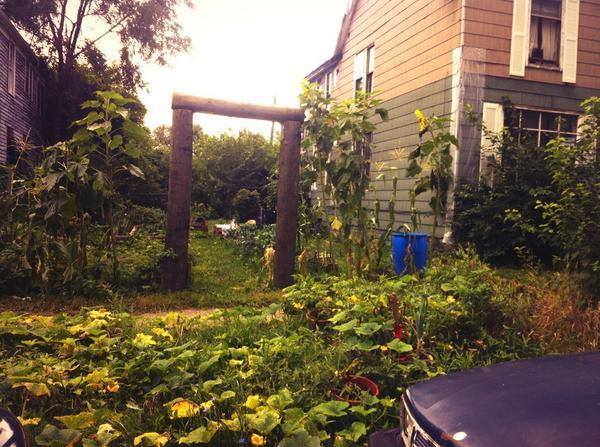 (squatted community garden in Detroit)