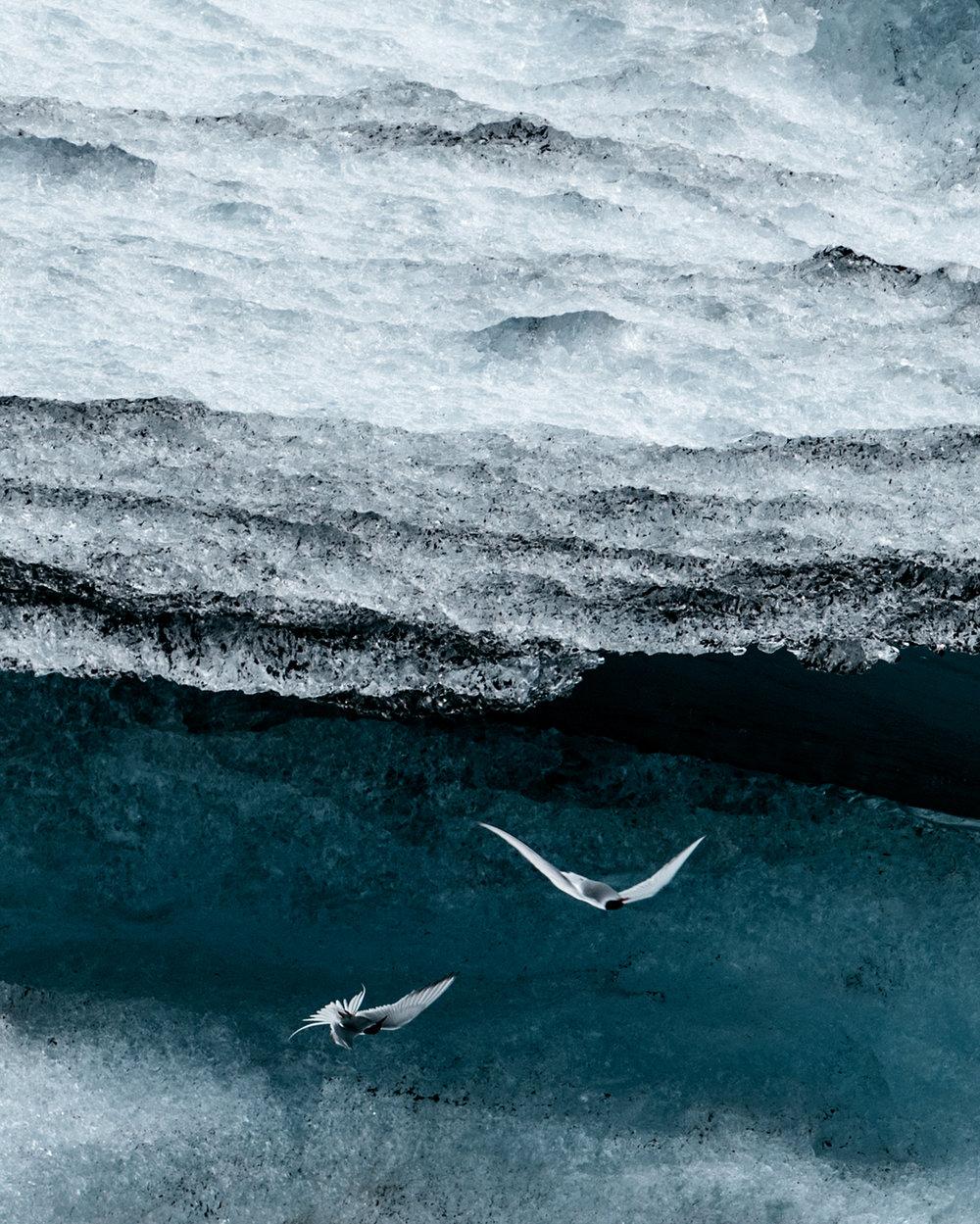 iceland_cold_1.jpg