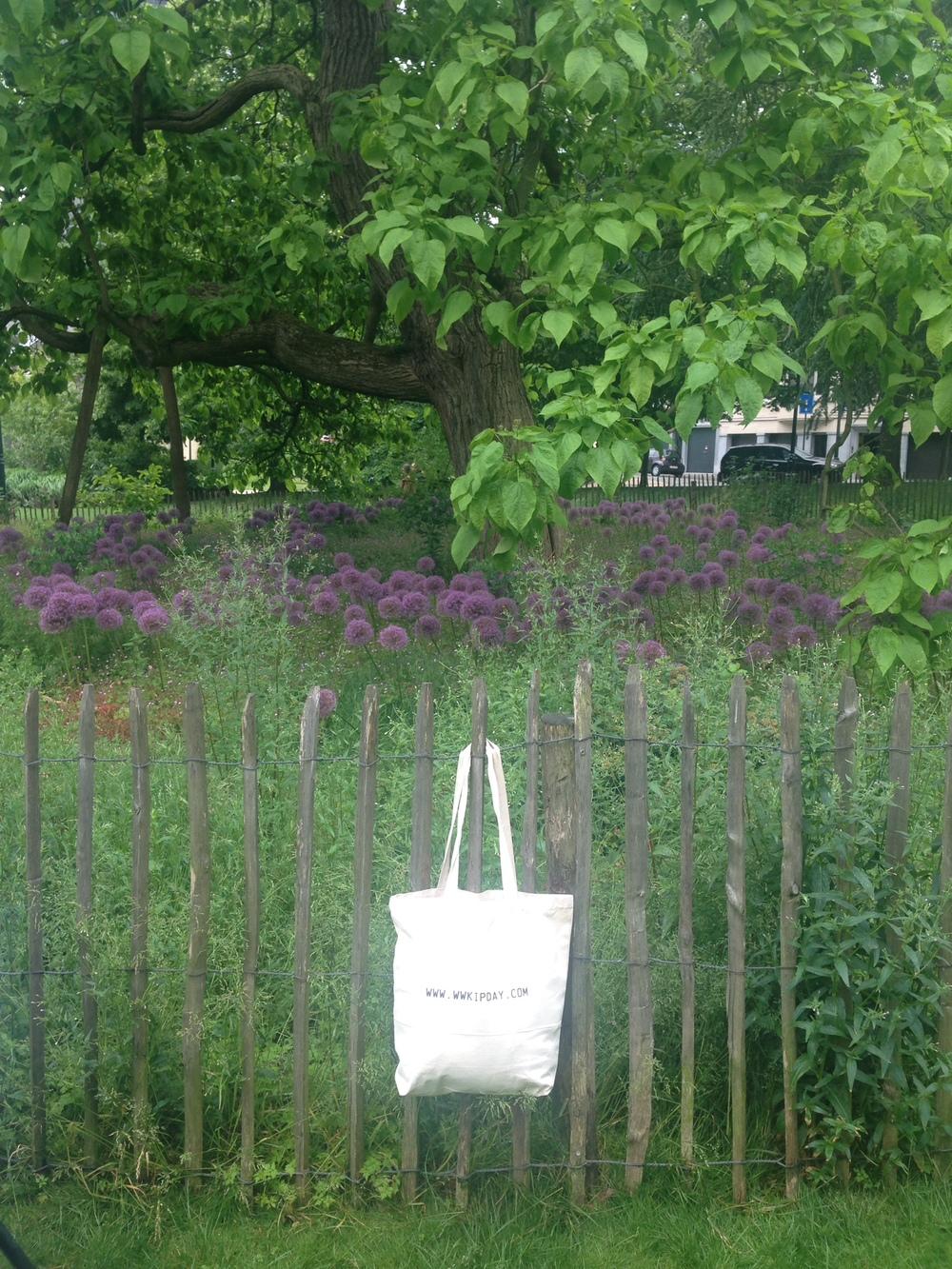 WWKIP bag in park.JPG