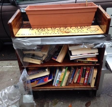 Mini library 01.JPG