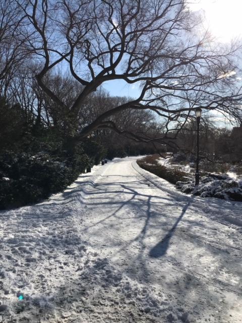 18-01 snow 9.JPG