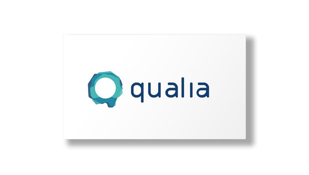qualia1.jpg