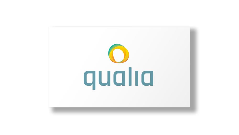 qualia2.jpg