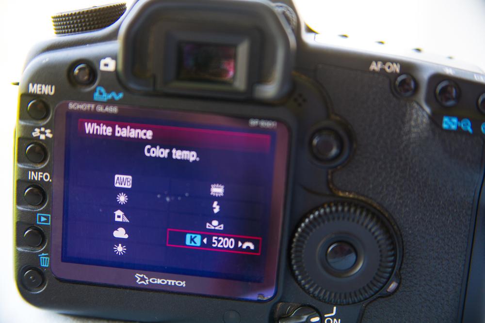 canon camera white balance kelvin