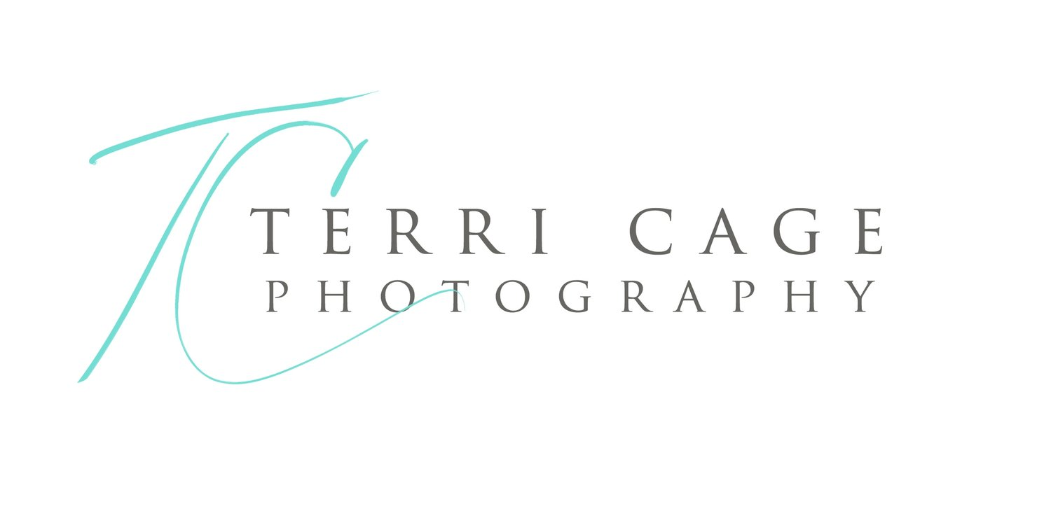 terri cage photography |  senior portraits | equine photographer