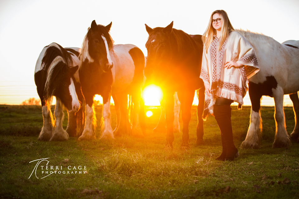 horse backdrop, gypsy, senior girl, horses, senior pictures