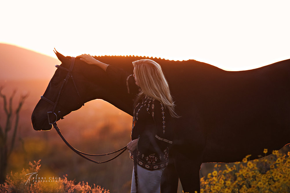 cave creek equine photographer, scottsdale AZ,